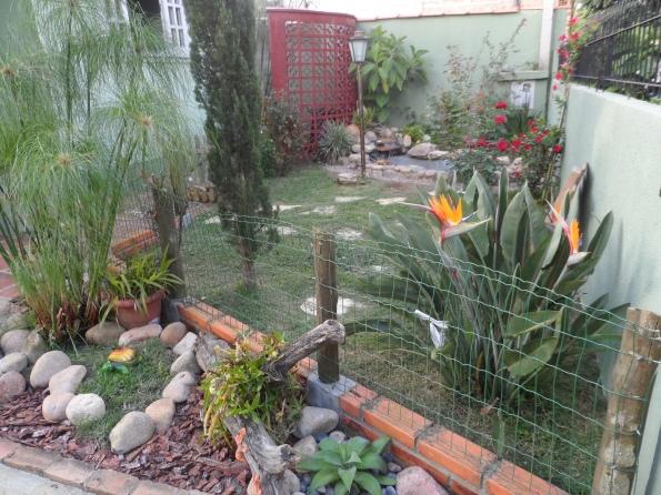 Meu jardim e lá no fundinho a cascatinha e as carpas.